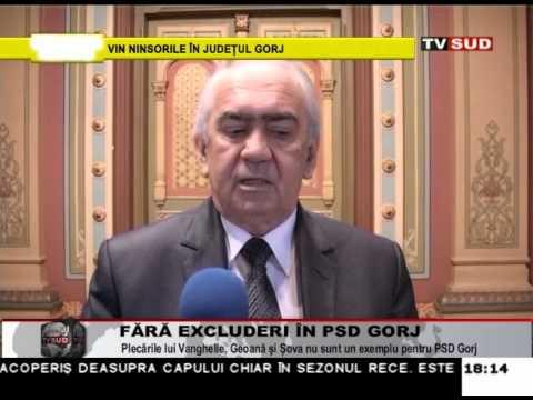 Fără excluderi în PSD Gorj
